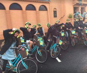 Happy Ewe Rotorua